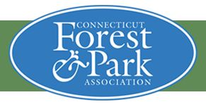 CT Forest & Park