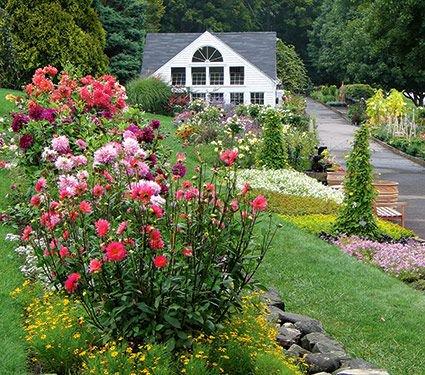 Store & Garden photo