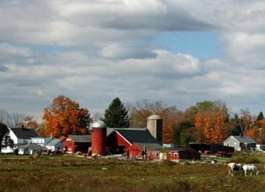 bunnell-farm
