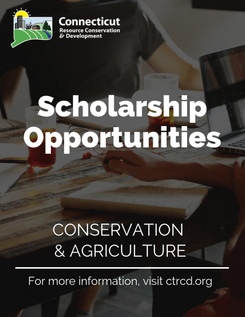 2019scholarship_flyer